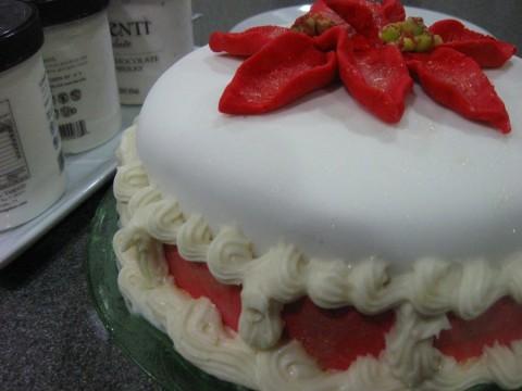 Abby Christmas cake