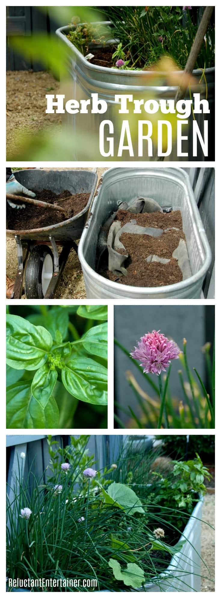 Herb Trough Garden: Easy & Accessible!