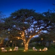 luxury-african-game-reserve-holidays-2-e1275817151224