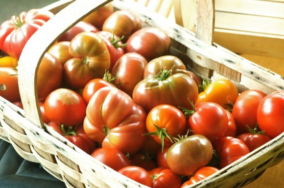 Tomatoes: 8 Money-Saving Tips on Gardening in the City