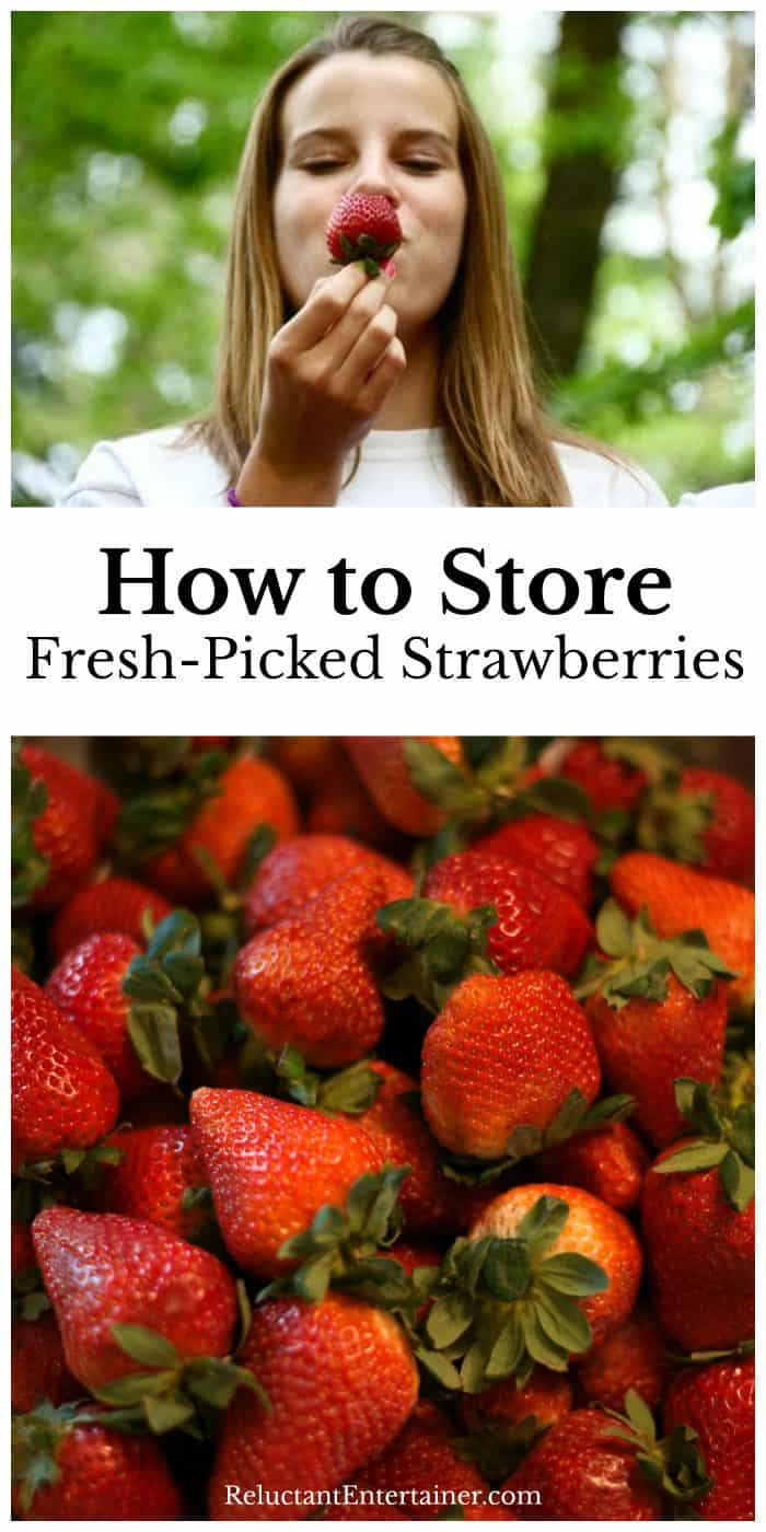 How to Store and Freeze Fresh Picked Strawberries