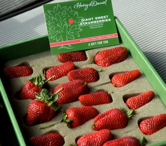 How To Store Fresh Picked Strawberries