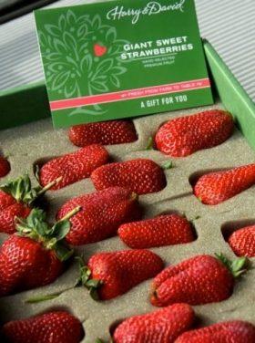 Harry & David strawberries FOTMC