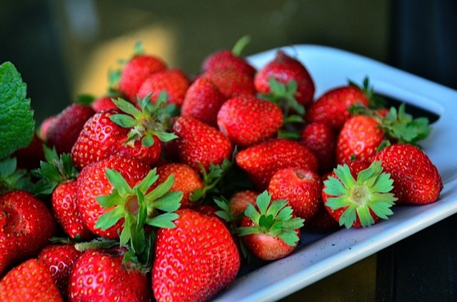 How To Plant Seascape Strawberries