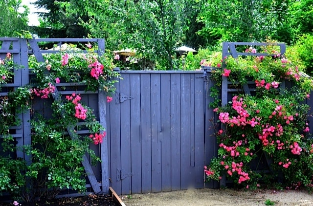 Privacy fencing on pinterest privacy fences backyards for Diy pallet fence gate