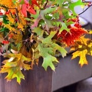 Elements of Fall Centerpiece with Bittersweet Branches