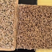 Mohawk SmartStrand Carpet | Reluctant Entertainer