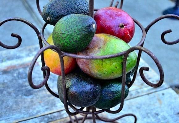 Guacamole and mango