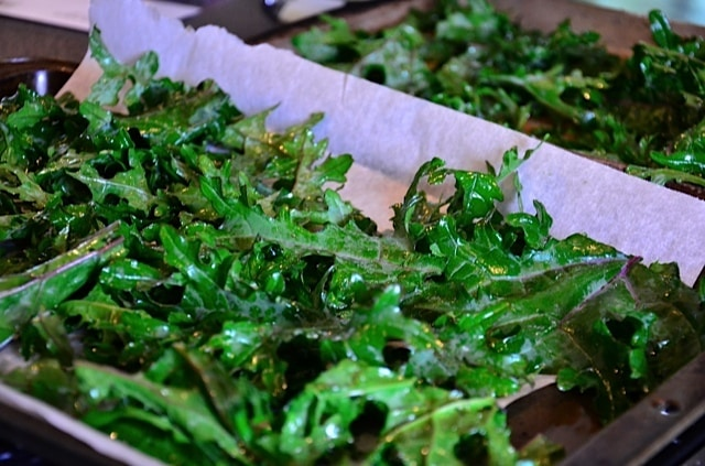 GardenChat Update and How to Make Kale Chips