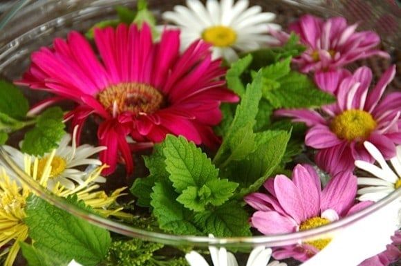 Flowers and mint