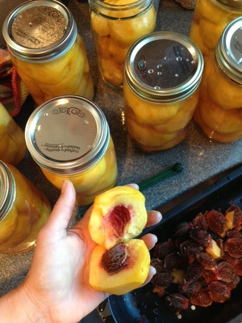Canning peaches | Reluctant Entertainer