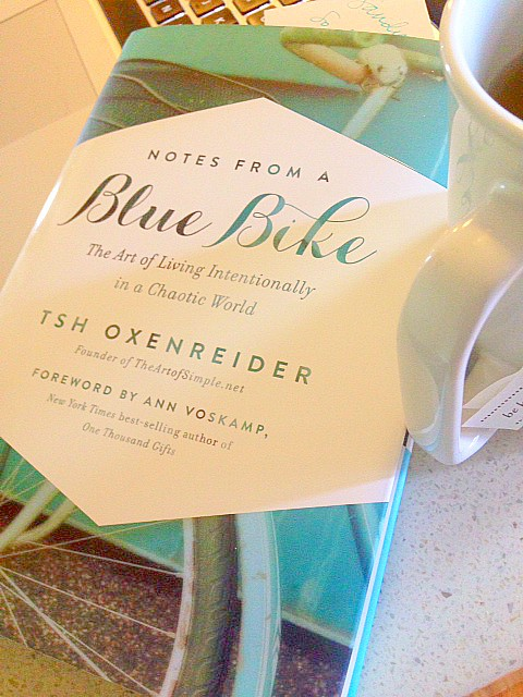 Bike Blue Book' blue bike