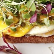 Toasted Parmesan Fried Egg One-Sided Sandwich