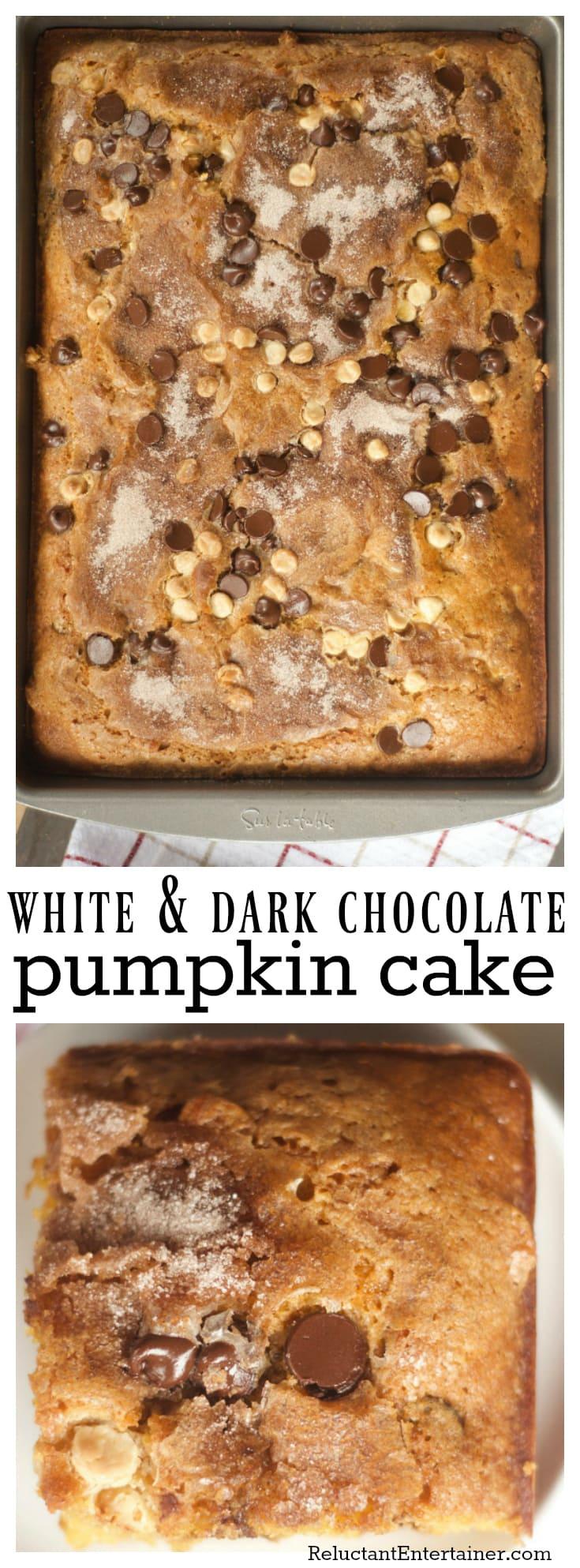 White and Dark Chocolate Pumpkin Cake