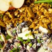 Skinnytaste's Curried Chicken Salad Recipe   Reluctant Entertainer.com