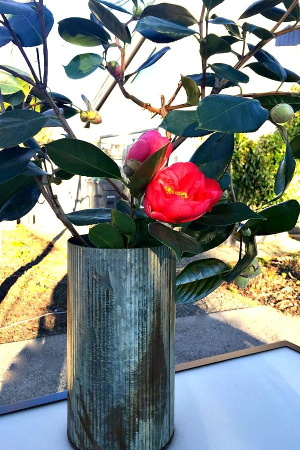 Camellia Table Setting
