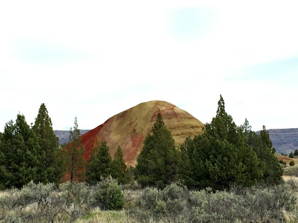 Painted Hills #Oregon