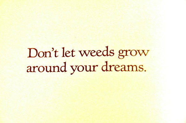 Don't let weeds grow around your dreams.