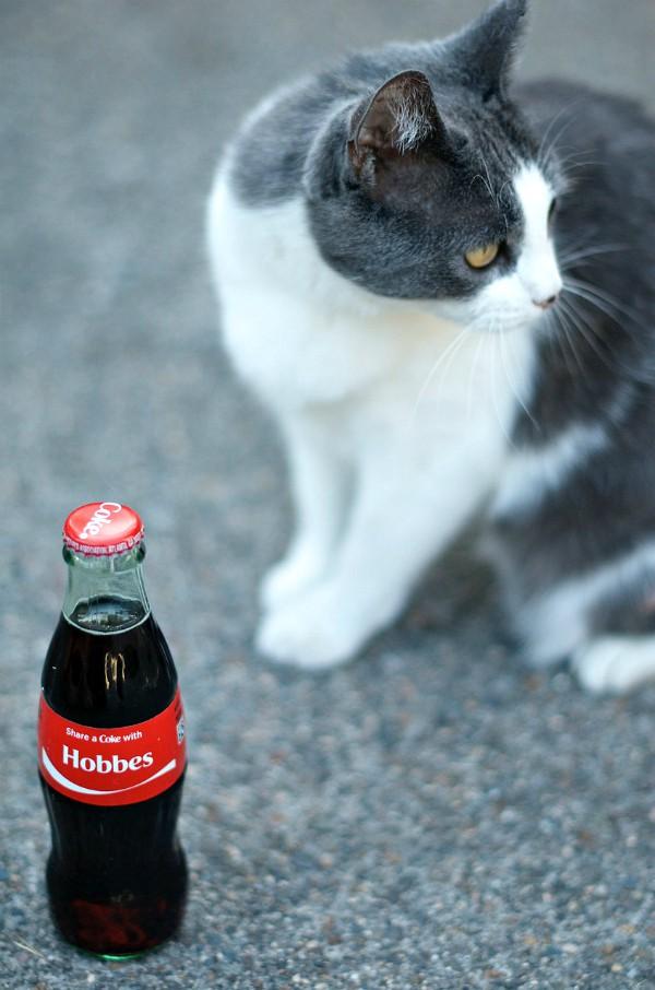 Hobbes - #shareacoke