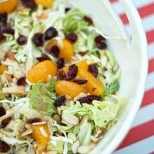Orange Cranberry Summer Slaw Salad