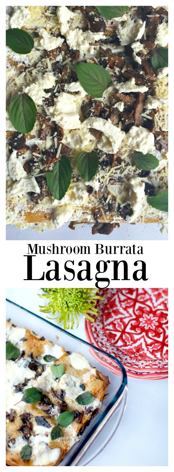 Vegetarian, creamy, mushroom burrata lasagna, an easy weeknight dinner!