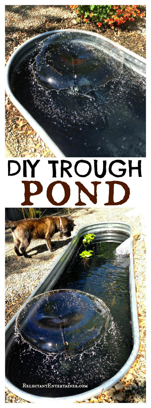 DIY Trough Pond at Reluctant Entertainer