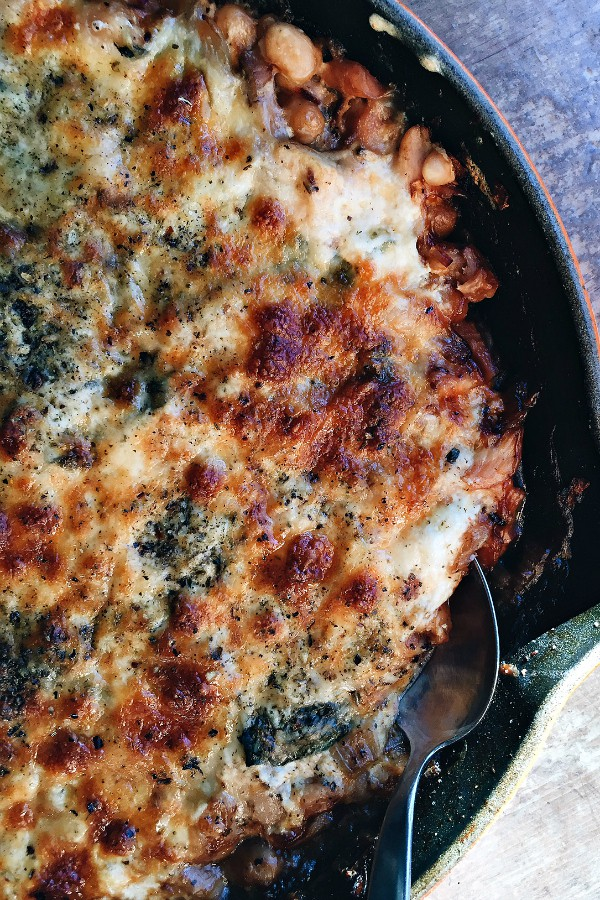 Chicken White Bean Mozzarella Dip