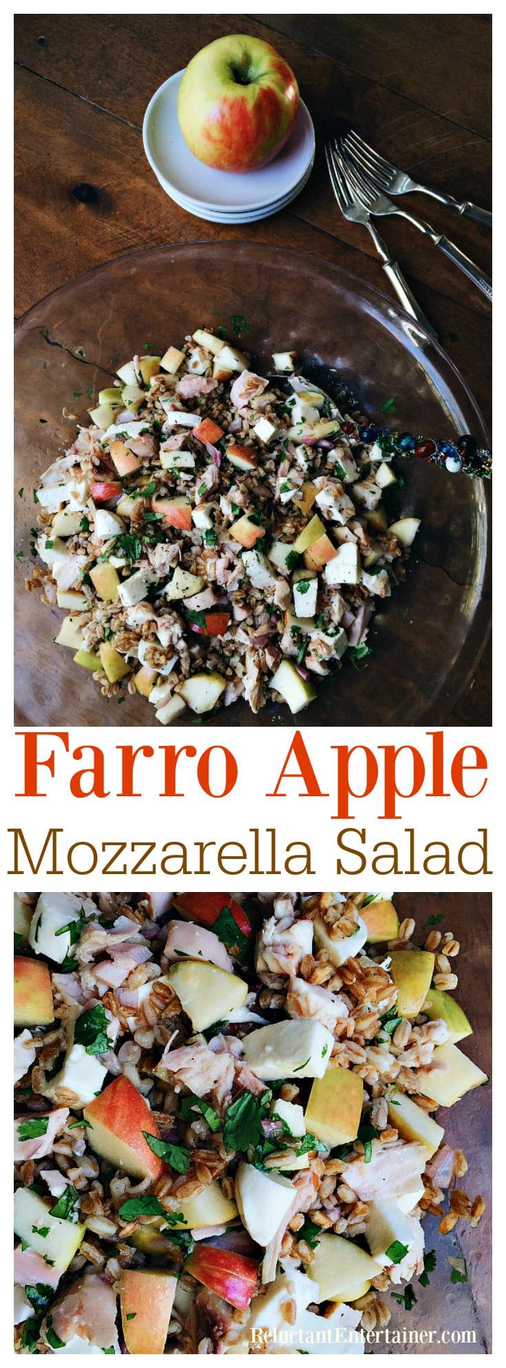 Farro Apple Mozzarella Salad - Reluctant Entertainer