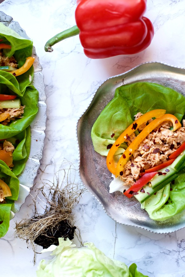 butter leaf lettuce spicy tuna recipe reluctant entertainer
