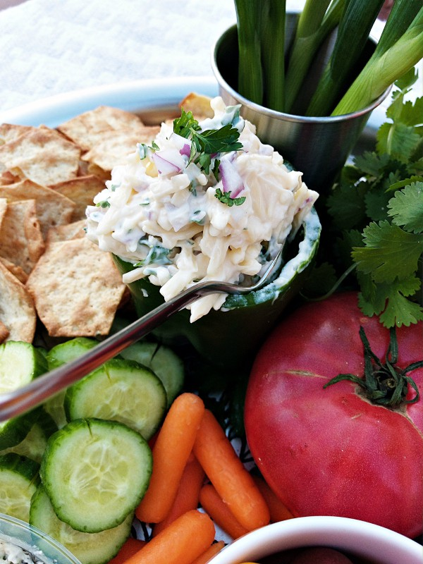 Game Day Smokey Jarlsberg Dip Recipe