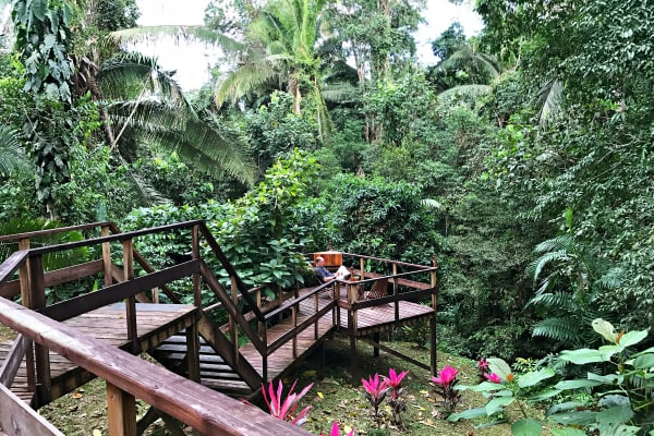 Jaguar Creek, Belize - a Rain Forest Eco-Resort Experience