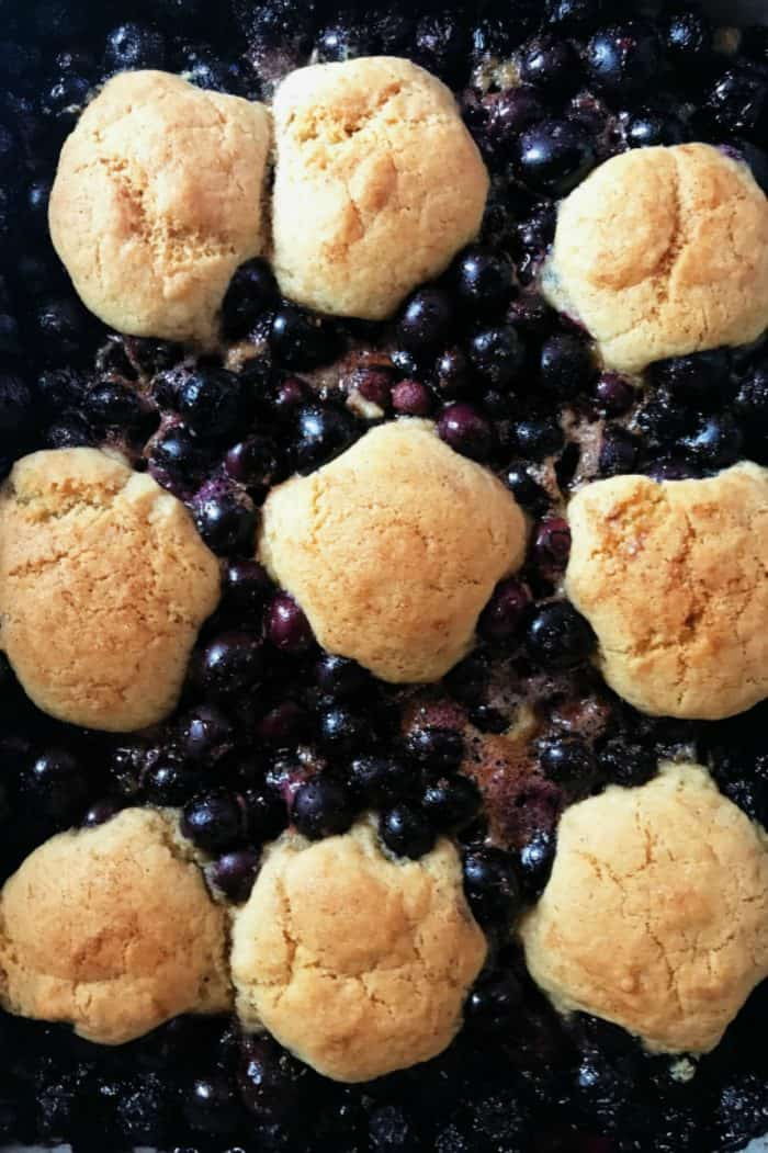 Easy Blueberry Snickerdoodle Summer Cobbler