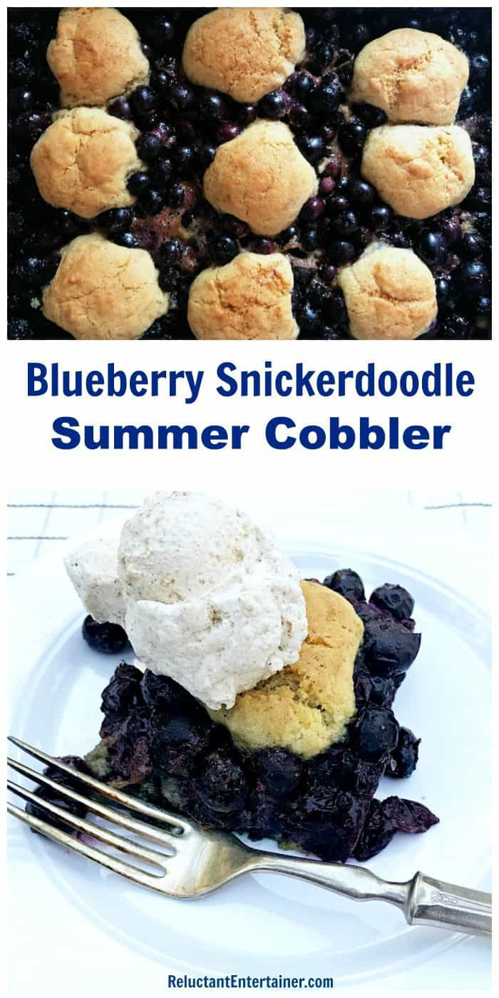 Blueberry Snickerdoodle Summer Cobbler Recipe