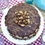 RICH Chocolate Peanut Butter Cup Cake Recipe