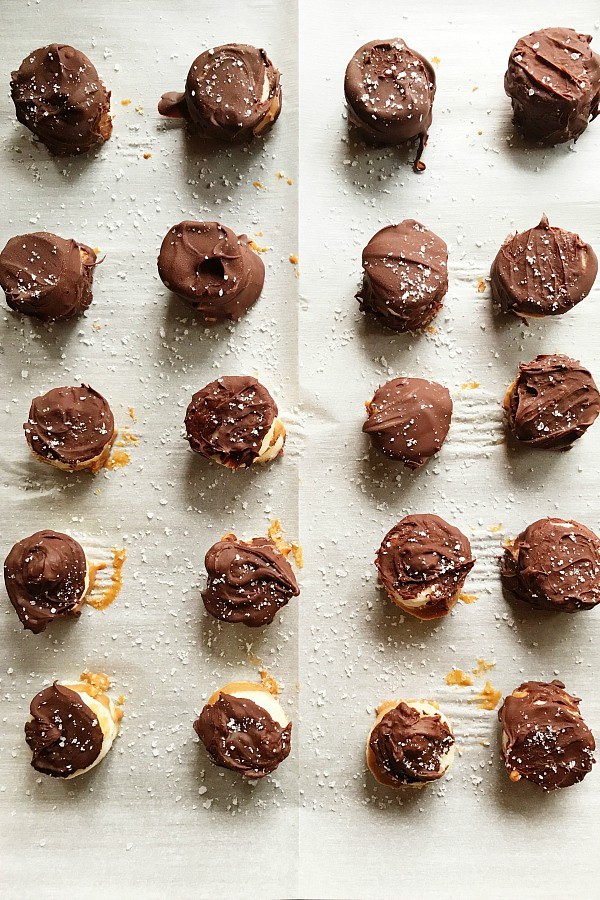 Chocolate Covered Peanut Butter Banana Bites