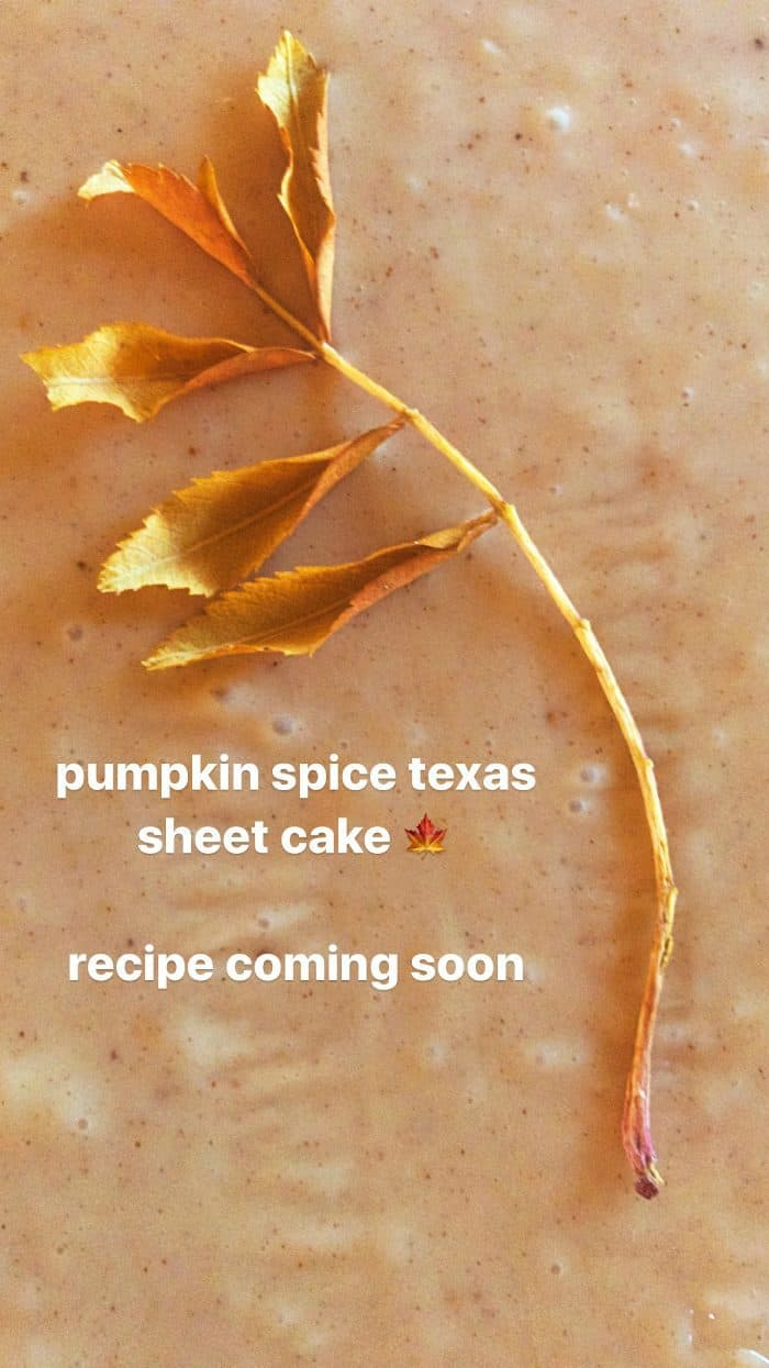 Pumpkin Chocolate Texas Sheet Cake Recipe