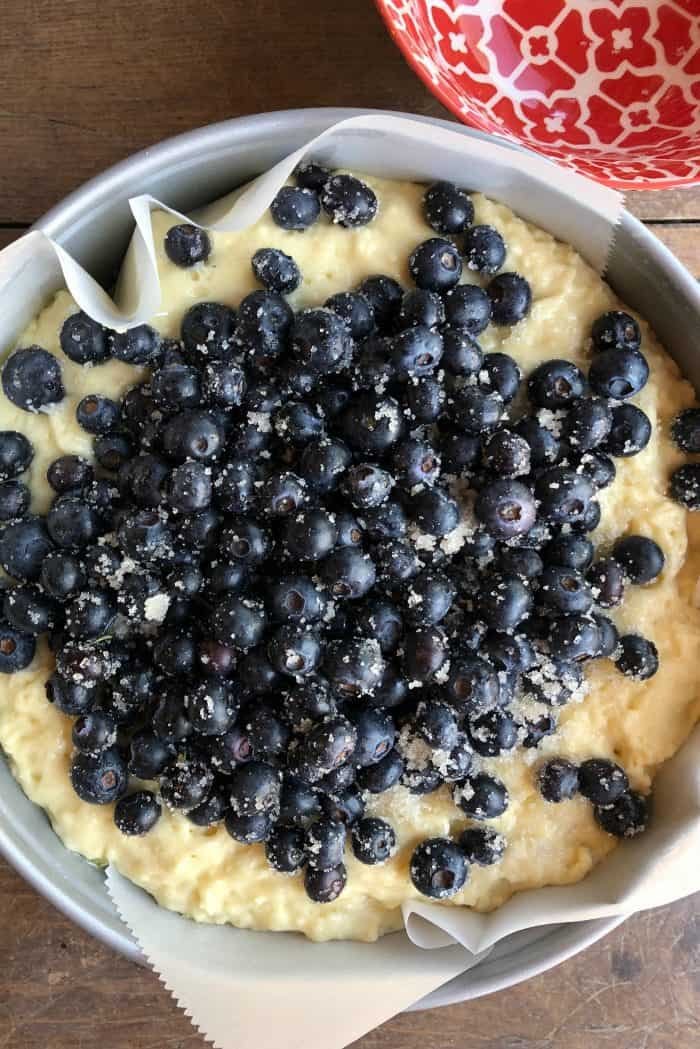 Easy Blueberry Yogurt Morning Cake
