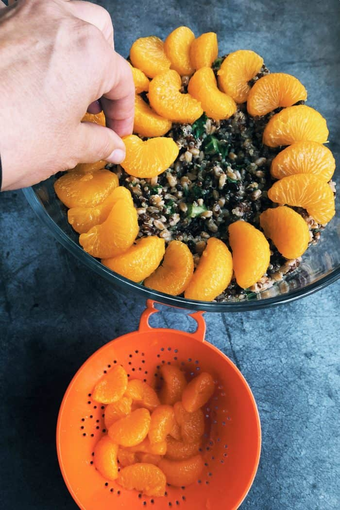 Layered Harvest Quinoa Salad - thanksgiving