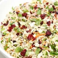large white bowl of chicken Asian salad with cranberries