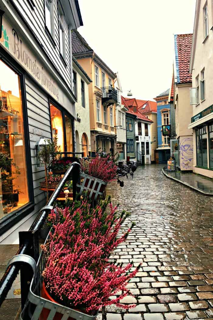 Homelands Viking Cruise Excursions Norway - walking Bergen